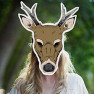 Woodland mask - Cervo marthas cottage 2