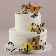CAKE TOPPER NATURAL BUTTERFLIES