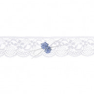 GARTER LACE AND LIGHT BLUE ROSES