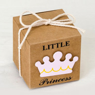 Scatolina cartoncino little princess 25 pezzi